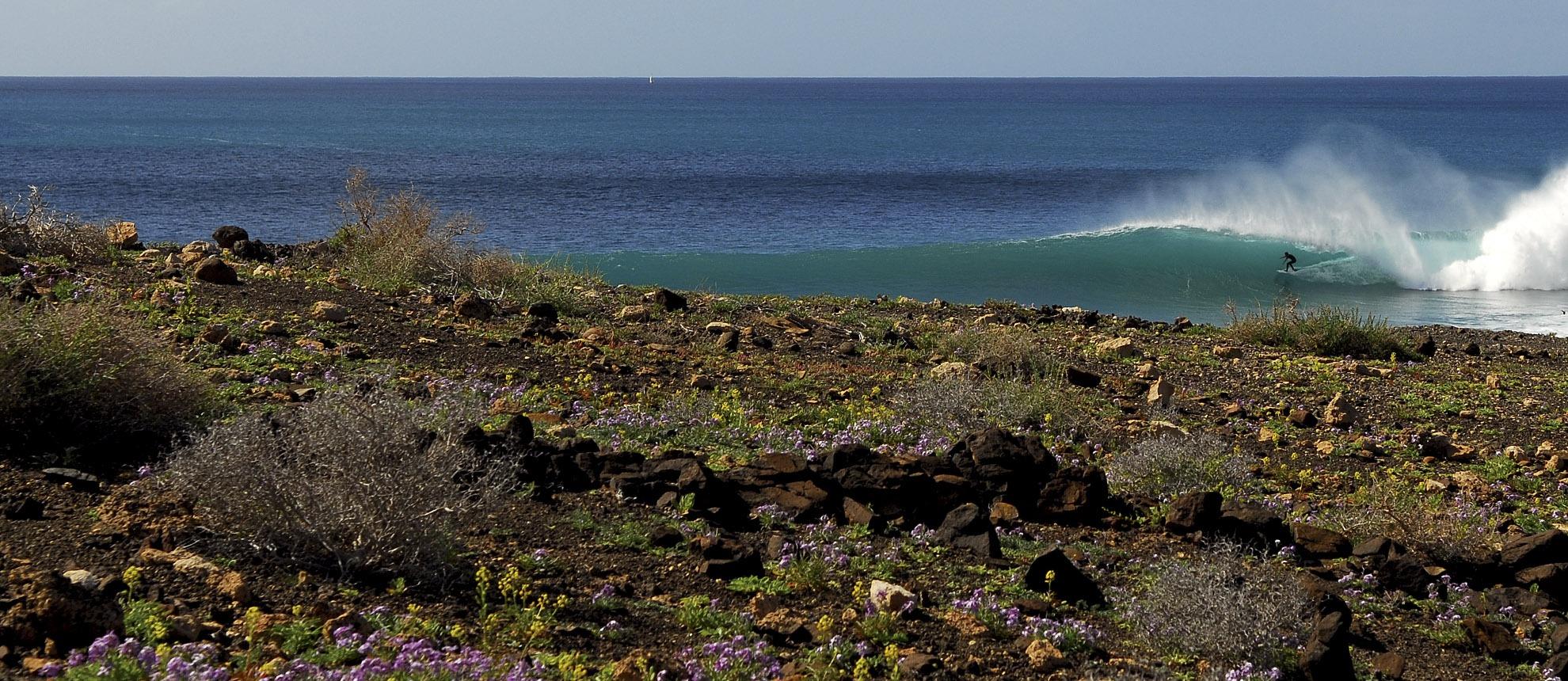 Edu donde quieres ir a surfear
