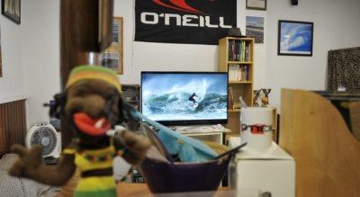 Detalle desde el mostrador de una surf school