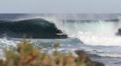 Lazi surfeando en Canarias